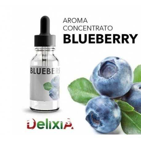 Delixia Blueberry Flavor concentrate